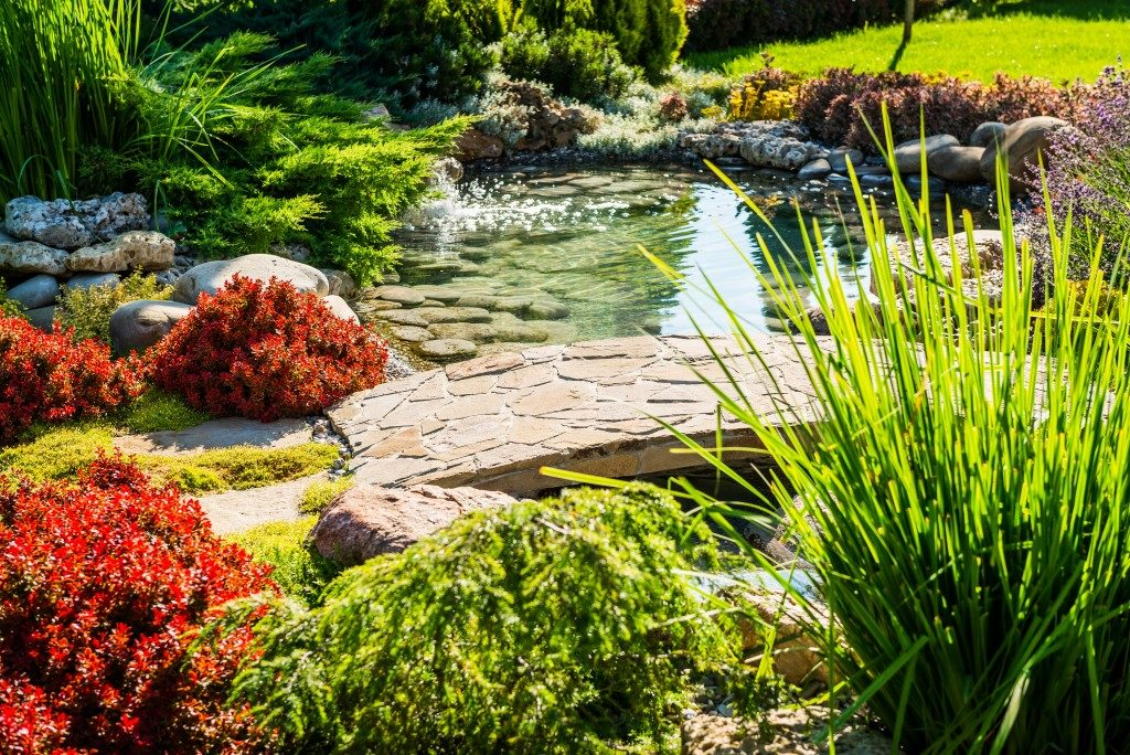 Landscaped backyard with pond