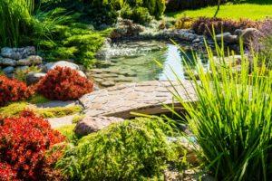 Landscaped backyard with pond